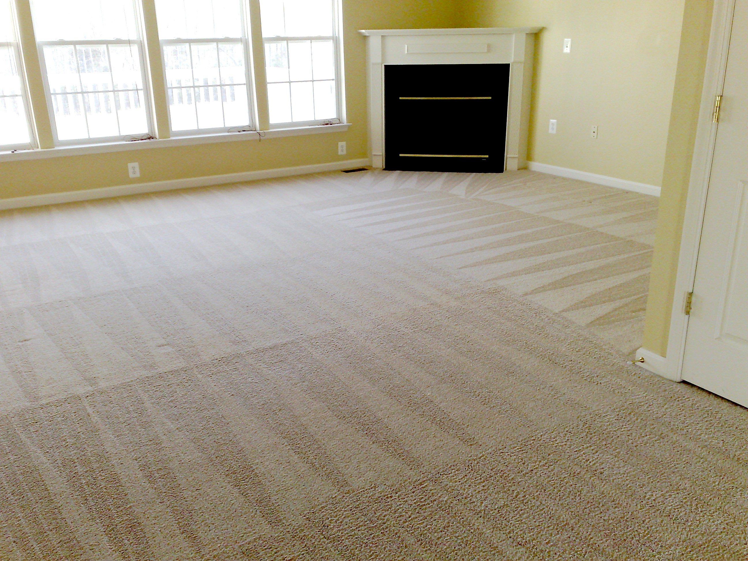 Pet Stain Removal Irvine, CA